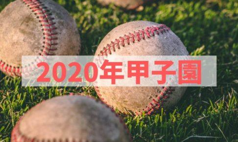 【2020年版】夏はやっぱり甲子園!開催日はいつ?