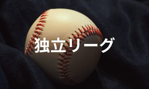 NPB(プロ野球)で耳にする「独立リーグ」とは?独立リーグのメリットや参加チームを解説